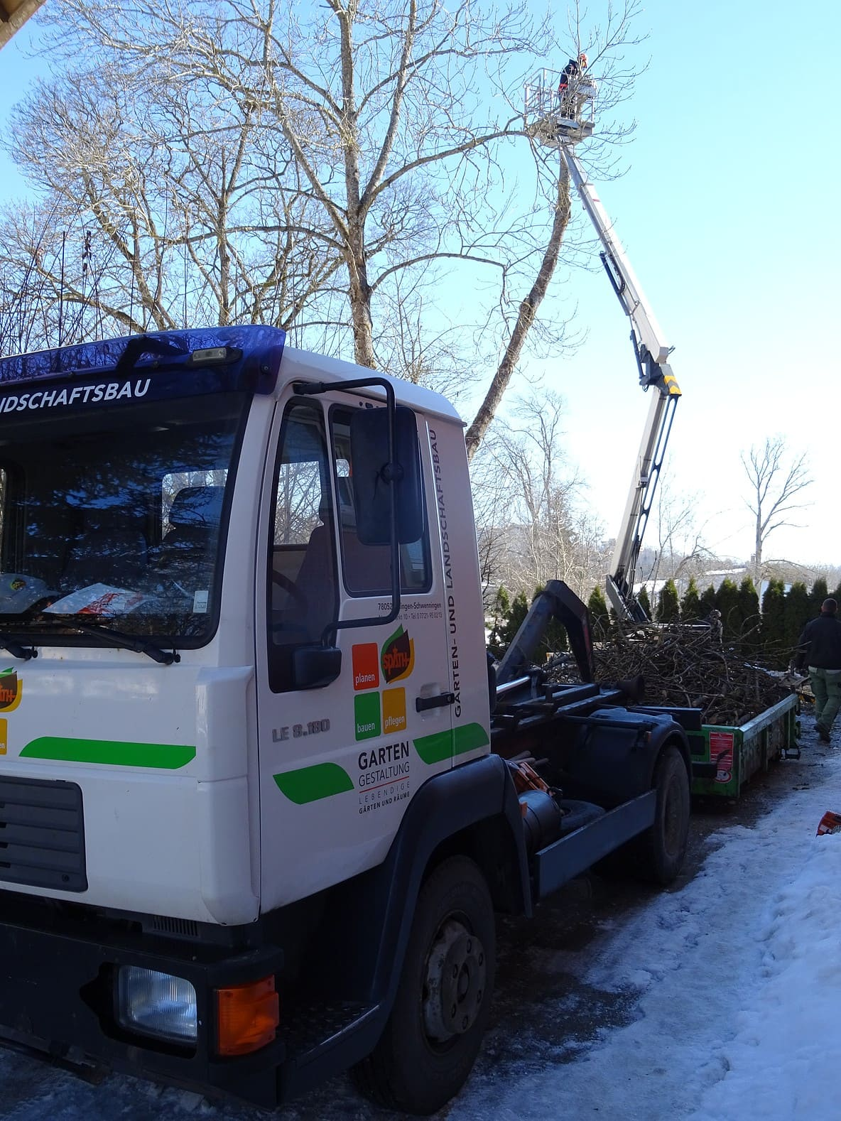 Baumpflege und Fällarbeiten 4